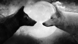 Wolf-and-Moon-Cool-HD-Wallpapers[1].jpg